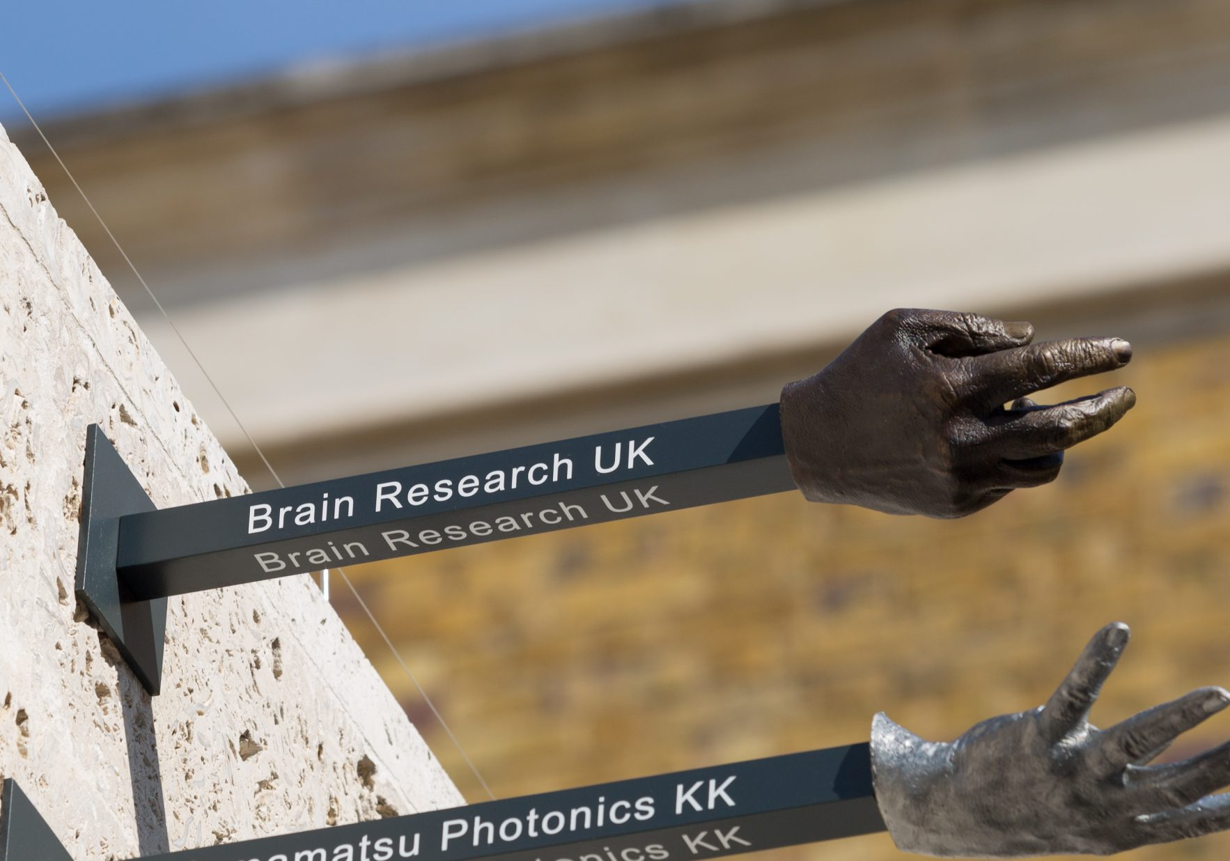 Brain Research Uk Hand Stem Ucl Donor Wall